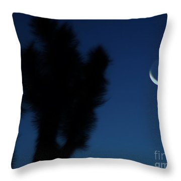 Blue Throw Pillow by Angela J Wright