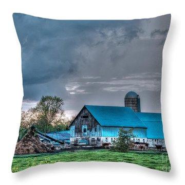 Blue Barn Throw Pillow by Bianca Nadeau