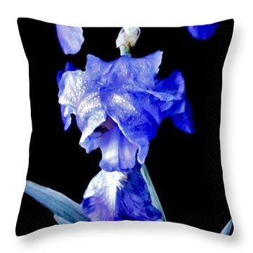 Blue Bearded Rhizomatous Irises Throw Pillow