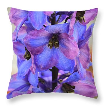 Blue Bell All Profits Go To Hospice Of The Calumet Area Throw Pillow