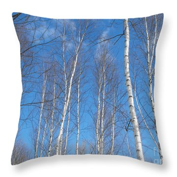 Blue Birch Throw Pillow by Erick Schmidt