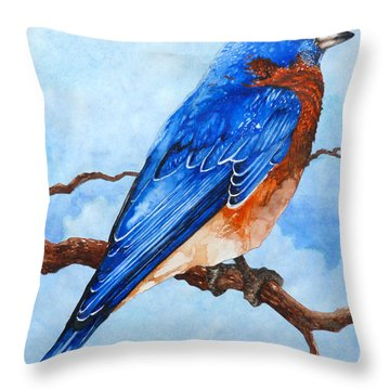 Blue Bird Throw Pillow by Curtiss Shaffer