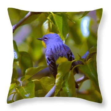 Blue Bird With A Yellow Throat Throw Pillow by Jeff Swan