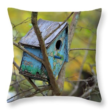 Throw Pillow featuring the photograph Blue Birdhouse by Gordon Elwell