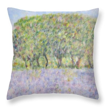 Blue Bonnets  Field In  Texas Throw Pillow