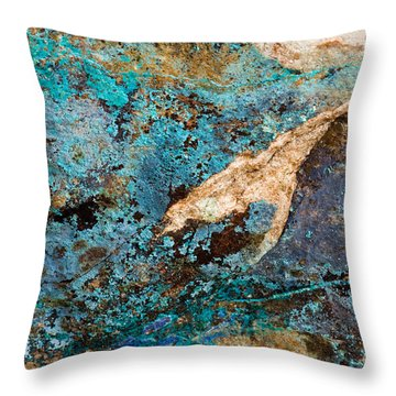 Throw Pillow featuring the photograph Blue Boulder Abstract by Chris Scroggins