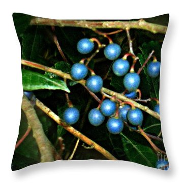 Throw Pillow featuring the photograph Blue Bush Berries  by Leanne Seymour