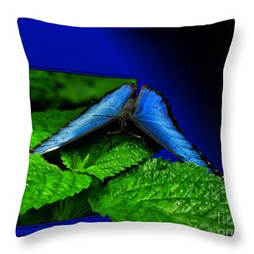 Blue Butterfly 02 Throw Pillow by Thomas Woolworth