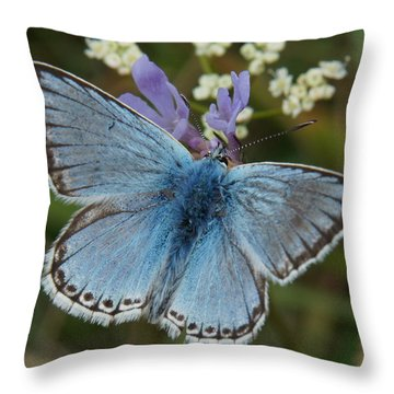 Throw Pillow featuring the digital art Blue Butterfly by Ron Harpham