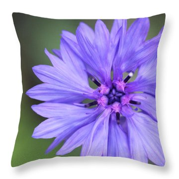 Blue Button Throw Pillow