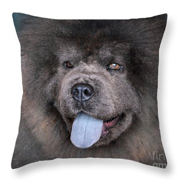 Blue Chow Chow Throw Pillow