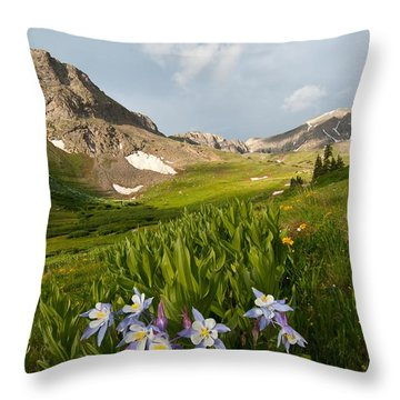 Throw Pillow featuring the photograph Handie's Peak And Blue Columbine On A Summer Morning by Cascade Colors