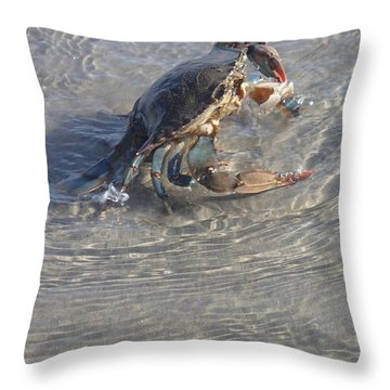 Throw Pillow featuring the photograph Blue Crab Chillin by Robert Nickologianis