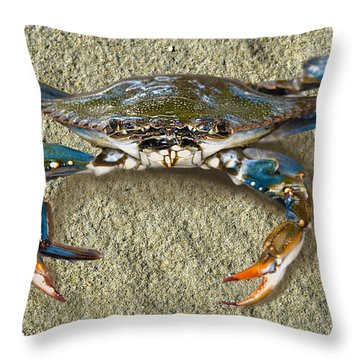 Blue Crab Confrontation Throw Pillow