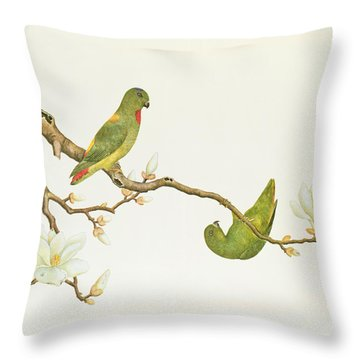 Blue Crowned Parakeet Hannging On A Magnolia Branch Throw Pillow