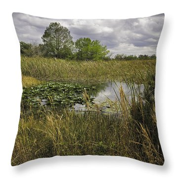 Blue Cypress Wetlands Throw Pillow