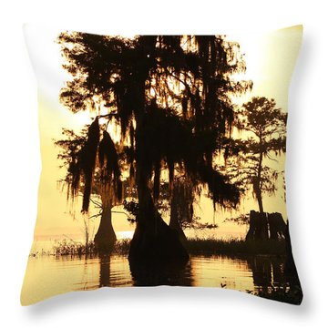 Throw Pillow featuring the photograph Blue Cypress Yellow Light by Paul Rebmann