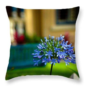 Blue Throw Pillow by Debi Demetrion