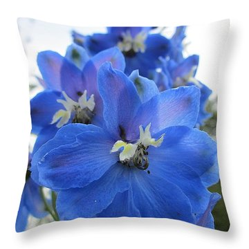Blue Delphinium Rising Throw Pillow by MTBobbins Photography