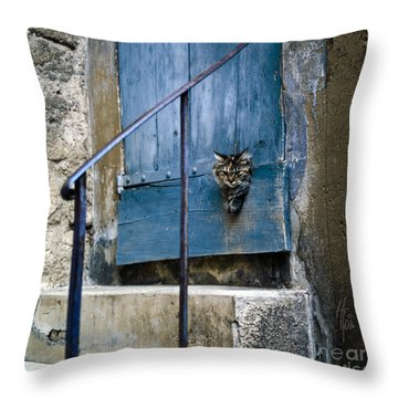 Blue Door With Pet Outlook Throw Pillow