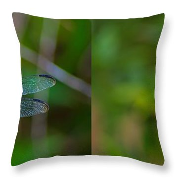 Blue Dragon Fly Wide Print Throw Pillow