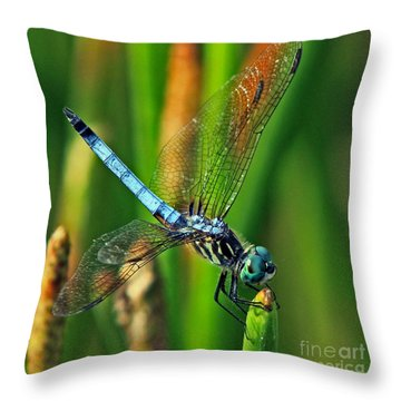 Blue Dragonfly Tiffany's Inspiration Throw Pillow by Larry Nieland