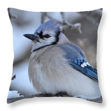 Blue Edition  7 Of 10 Throw Pillow