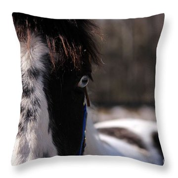 Blue Eye Stare Throw Pillow