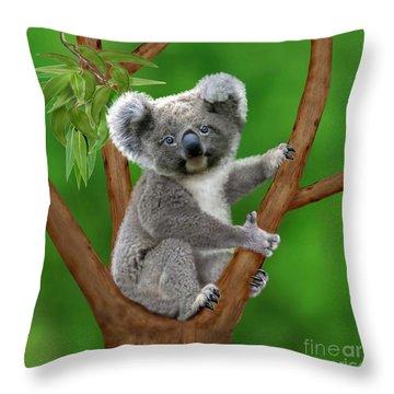 Blue-eyed Baby Koala Throw Pillow