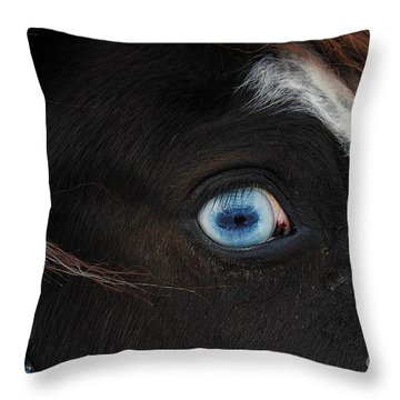 Blue Eyed Horse Throw Pillow
