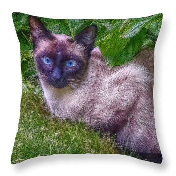 Throw Pillow featuring the photograph Blue Eyes - Signed by Hanny Heim