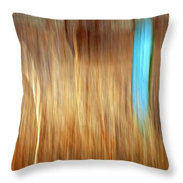 Blue Fencepost Throw Pillow by Theresa Tahara