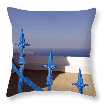 Blue Gate Throw Pillow by Debi Demetrion