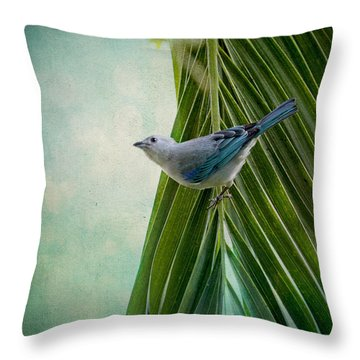 Throw Pillow featuring the photograph Blue Grey Tanager On A Palm Tree by Peggy Collins