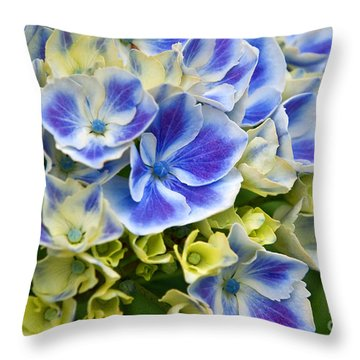 Blue Harlequin Hydrandea Flower Throw Pillow by Valerie Garner