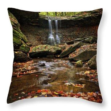 Blue Hen Falls In Autumn Throw Pillow