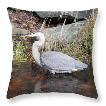 Blue Heron II Throw Pillow by Don Wright