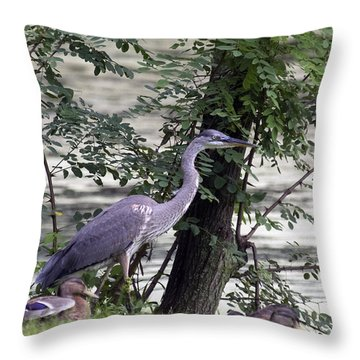 Blue Heron And Duck Throw Pillow