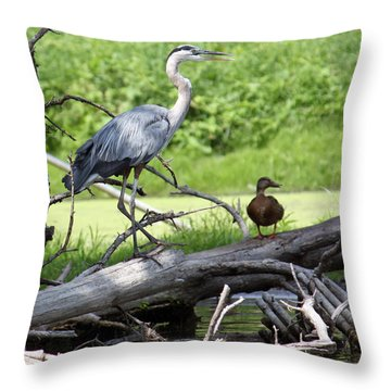 Blue Heron And Friend Throw Pillow by Debbie Hart