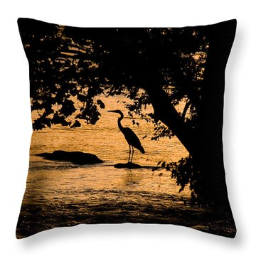 Blue Heron At Sunset Throw Pillow by Andy Lawless
