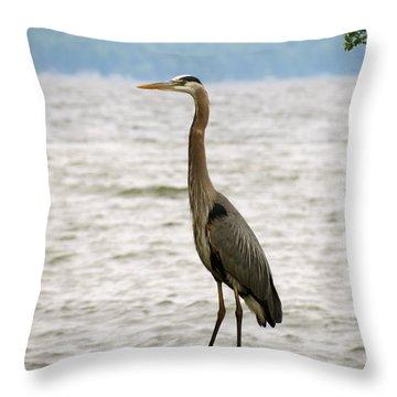 Blue Heron Blue Day Throw Pillow