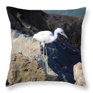 Blue Heron  Throw Pillow by Chris Thomas