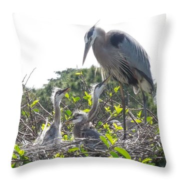 Throw Pillow featuring the photograph Blue Heron Family by Ron Davidson