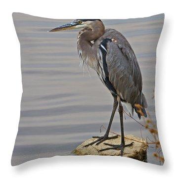 Blue Heron IIi Throw Pillow