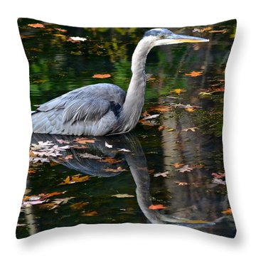 Blue Heron In Autumn Waters Throw Pillow by Frozen in Time Fine Art Photography