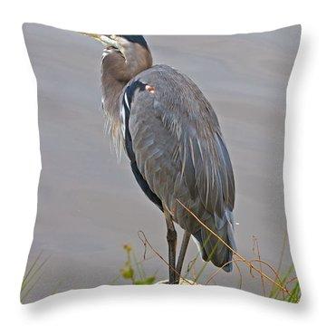 Blue Heron Iv Throw Pillow