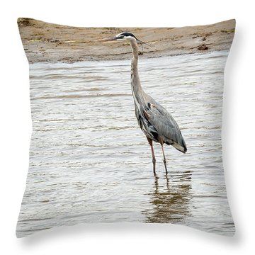 Blue Heron Throw Pillow