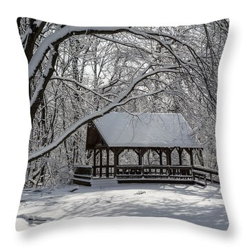 Blue Heron Park After Snowfall Throw Pillow
