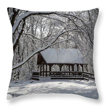 Blue Heron Park After Snowfall Throw Pillow