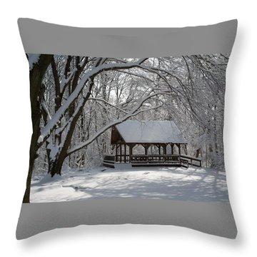Blue Heron Park In Winter Throw Pillow